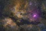 The Butterfly Nebula ( IC1318) in Cygnus