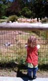 Boo Sitting -  - 5/26/11 - San Francisco Zoo