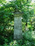 Cmentarz Tunicki w Krzemieńcu(IMG_8310.jpg)