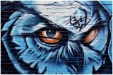 torontoGraffiti2.jpg