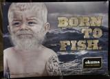 Born to Fish 2