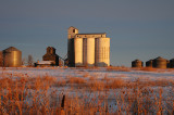 Willard, CO old grain elevators with the sunrise.