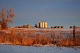 Willard, CO old grain elevators as the sun comes up.