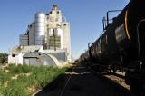 Ault, CO grain elevator & westbound UP train.