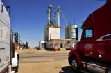 Kersey, CO grain elevator & feed mill.