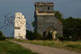 Merriman, NE grain elevators.