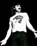 Gallagher 1985