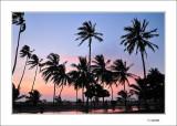 Sri-Lanka - Maldives 2012