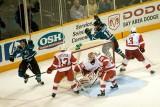 Detroit Red Wings vs. San Jose Sharks - January 19, 2008