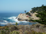 Point Lobos State Park and Preserve
