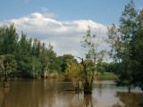 Long Neck Lagoon