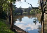 Parramatta River in the Park – 2