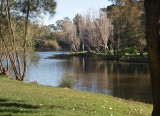Parramatta River in the Park – 3