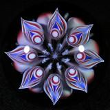 Fractal Bloom Size: 1.75 Price: SOLD