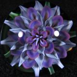 Iron Lotus Size: 1.60 Price: SOLD