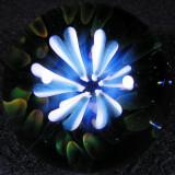 Luminox Size: 1.51 Price: SOLD