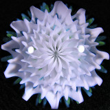 Bloom Bling Size: 1.50 Price: SOLD