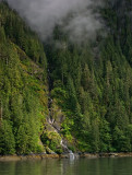 Alaska Cruise and Expeditions