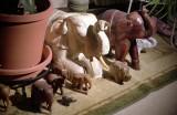 05_elephants.JPG