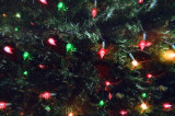 08_lights.JPG