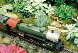 05_train_show.JPG
