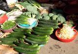 Fresh cucumbers and soya sprouts, Jukdo Sheajang
