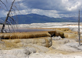 Yellowstone National Park – Mammoth Hot Springs, Wyoming
