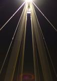 Bridge Cables_5882