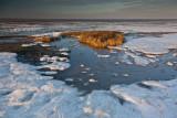 Frozen Seasalter 66