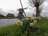 1204_Holland trip sony_22-2.jpg