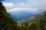 Hawaiian Rainbow Kauai