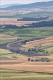 Palouse country, from Steptoe Butte