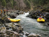 South Fork of the Cal Salmon