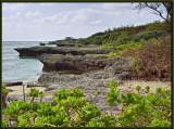 Beach near Cape Zanpa