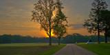 Morning Road