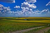 National Tall Grass Prairie Preserve