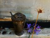 wall flower.jpg