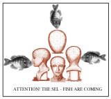 the sel fish.jpg