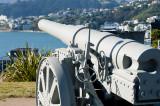 8 August 2011 - Krupp Gun overlooking Wellington