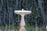 14 August 2011 - the birdbath as the snow falls