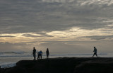 Late Afternoon at Muriwai Beach