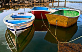 MANCHESTER BY THE SEA_4521.jpg