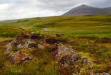 Northcoast Highlands1772 .jpg