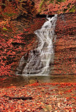 BUTTERMILK FALLS-3377.jpg