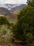 Salt River Canyon View