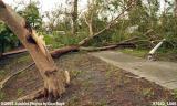 Hurricane Wilma Damage in Miami Lakes Stock Photos Gallery
