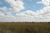 35th Anniversary of Eastern Airlines flight 401 crash memorial service - ultralight aircraft flyover of crash site, photo #2917