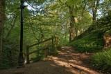 How Stean Gorge, Lofthouse, Nidderdale IMG_2339.jpg