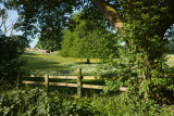 Green Lane, Eppleworth IMG_3320.jpg
