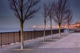 Victoria Dock IMG_9896.jpg
